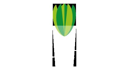Møllehagen leverer planter til miljøer